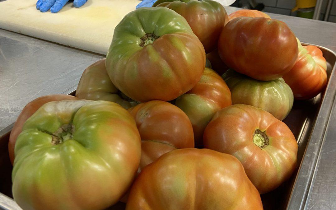 Oι καταπληκτικές ομοιότητες ανάμεσα στην ελληνική  «χοντροκατσαρή» και την ιταλική «Riccio di Parma»